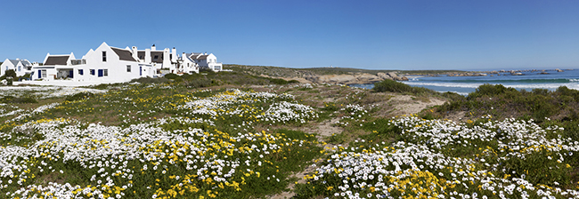 Abalone House - Paternoster Panoramic 1