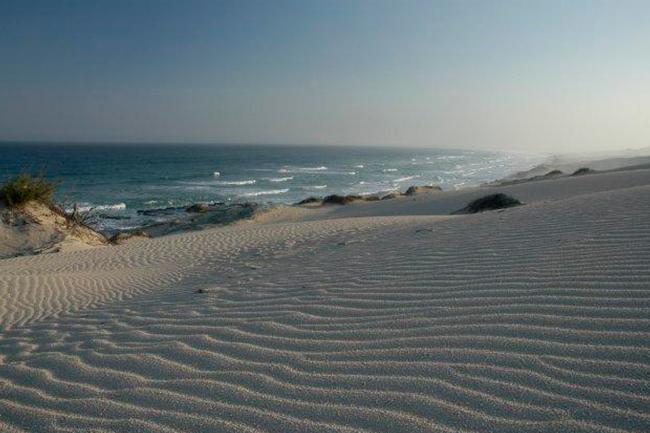 De-Hoop-dunes