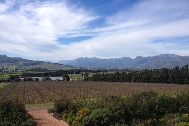 Glen Carlou offers magnificent views on to Paarl (the home of KWV)