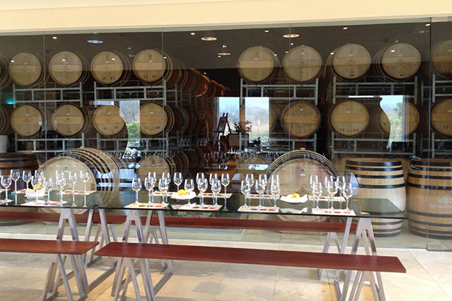 The cellar that houses Morgenster's premium wines