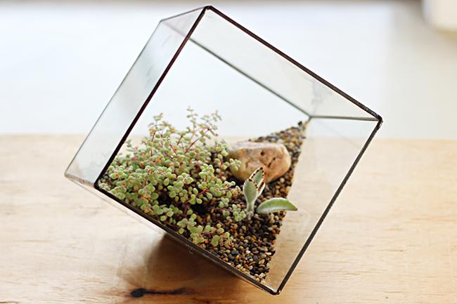 large_cube