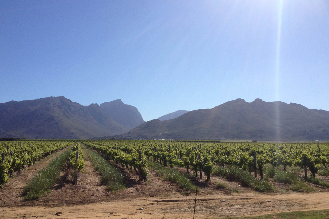 DISCOVERING THE BREEDEKLOOF