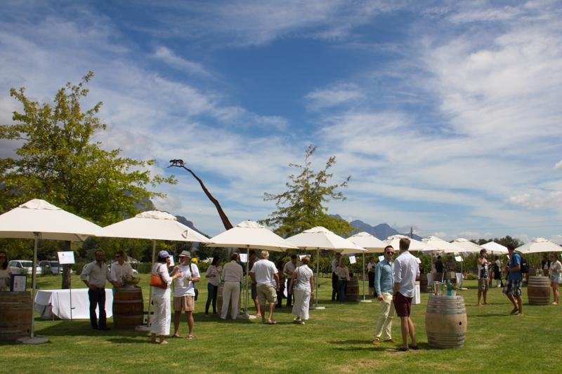 Franschhoek-Summer-Wines-31