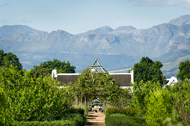 5.CENTRAL AXIS ONFARMHOUSE WITH DU TOITSKLOOF MOUNTAINS AS BACKDROP copy