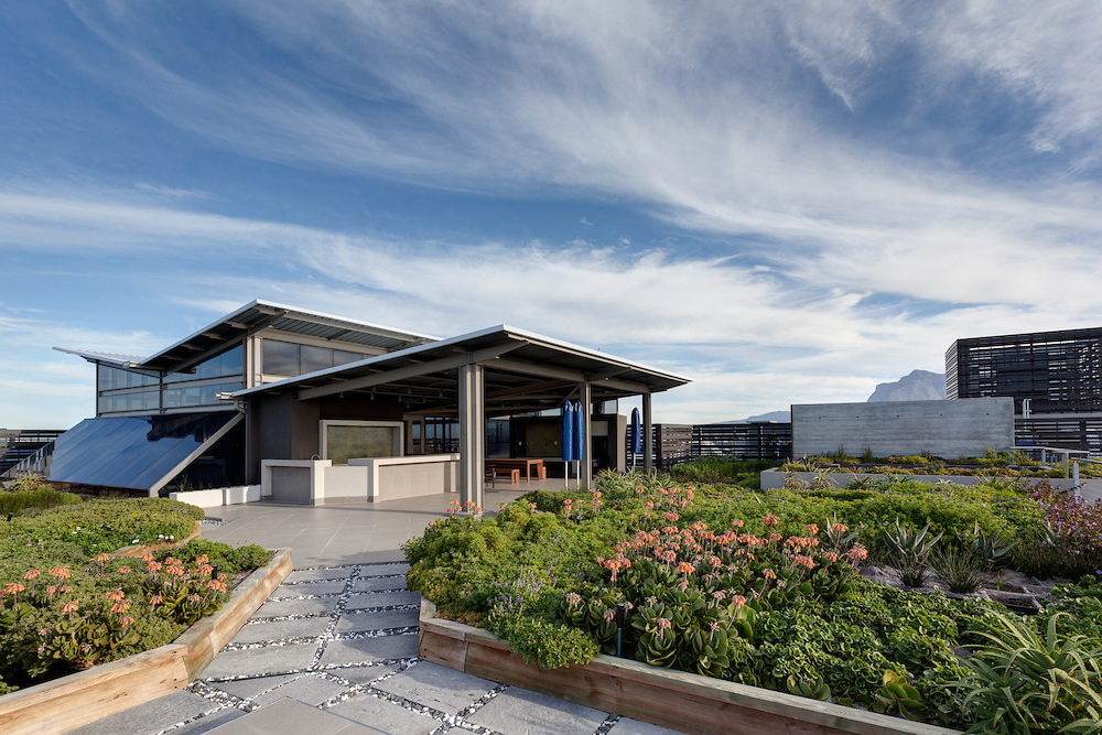 Aurecon rooftop garden - image by Jason Buch Photography