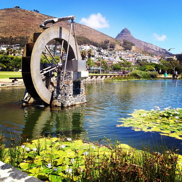 Green Point Eco Park, image by @bevy_k