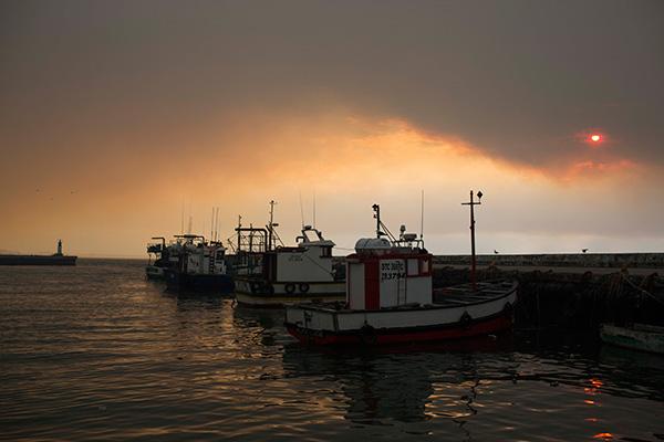Cape Fire