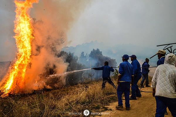 Groot Constantia fire
