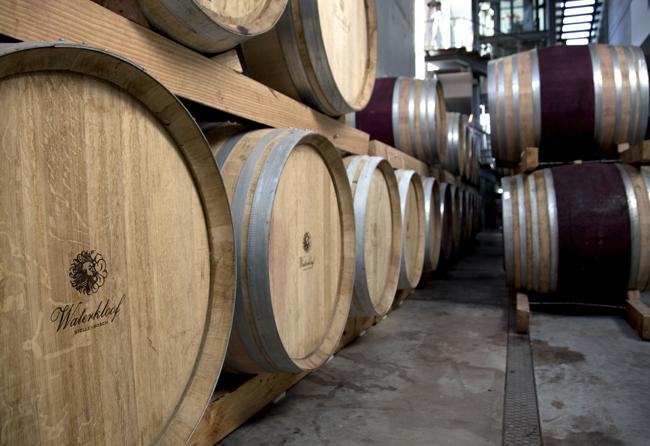 Waterkloof Wine Estate