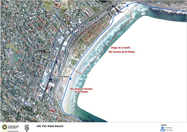 City of Cape Town Dog Beach 1