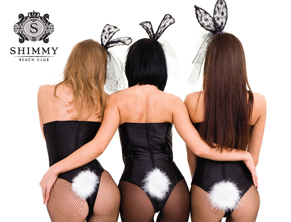Cape Town Etc Events   Shimmy Bunny Party