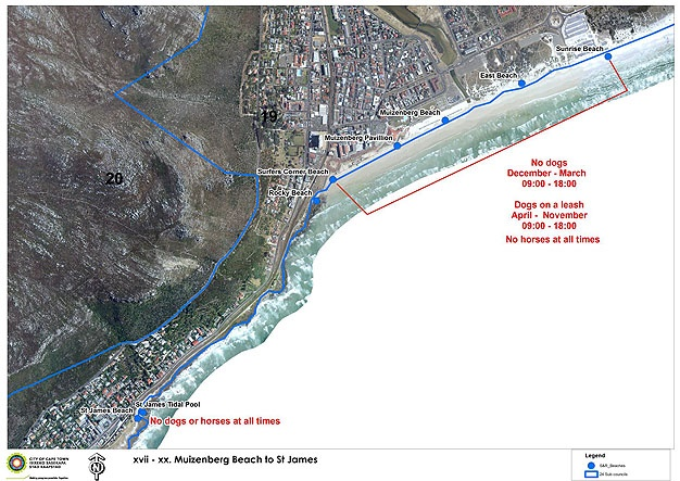City of Cape Town Dog Beach 2