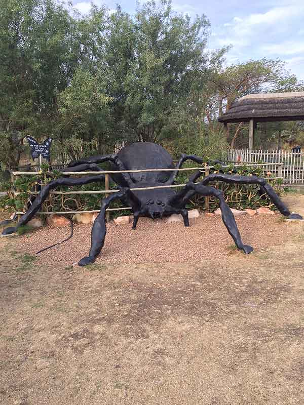 Butterfly-World-giant-spider