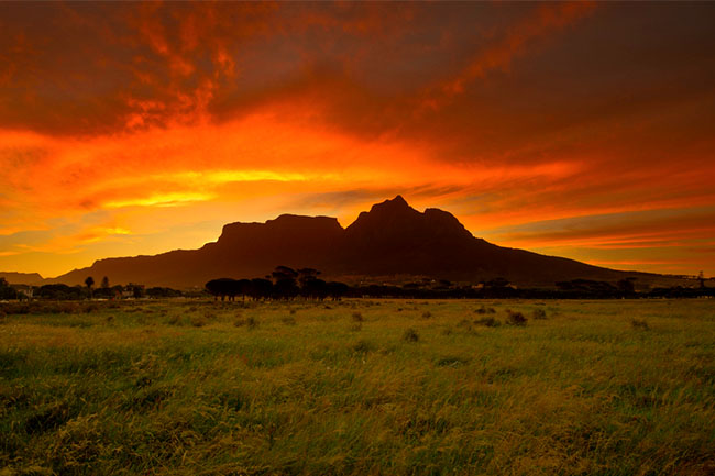5 OF THE BEST GREEN SPACES IN CAPE TOWN