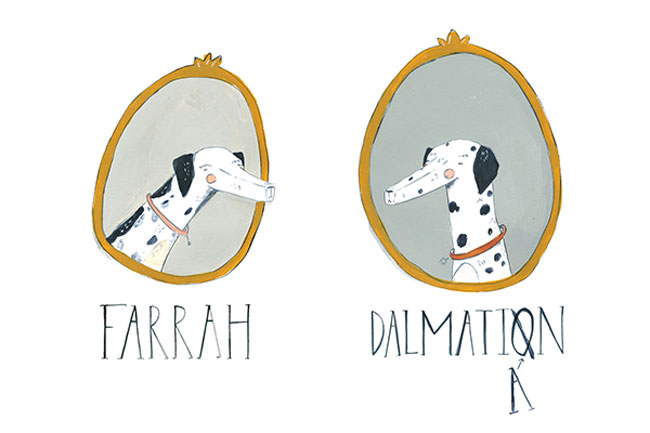 FARRAH WAS NOT A DALMATIAN