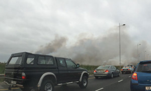flamingo vlei fire