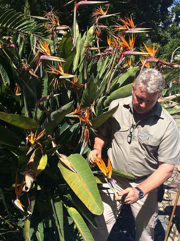 Bruce explaining how sugar birds pollinate the unique-looking Strelitzia