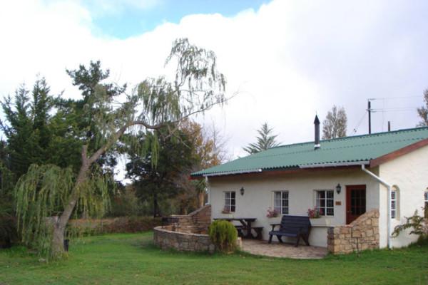 cottage-cherry