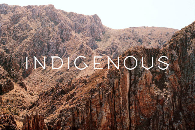 INDIGENOUS – THE NEW BODY, HOME AND SOUL STORE