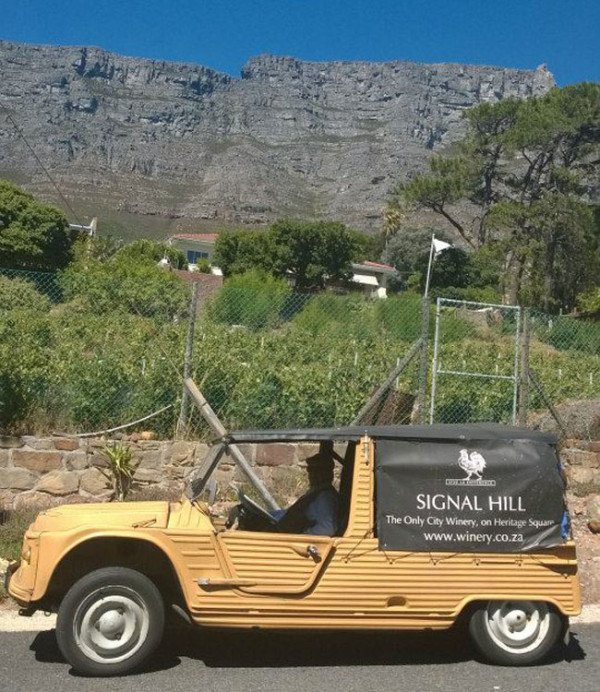 signal hill wines