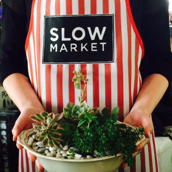 slow-food-apron-cacti