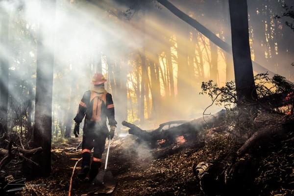 Cape town 2015 fire
