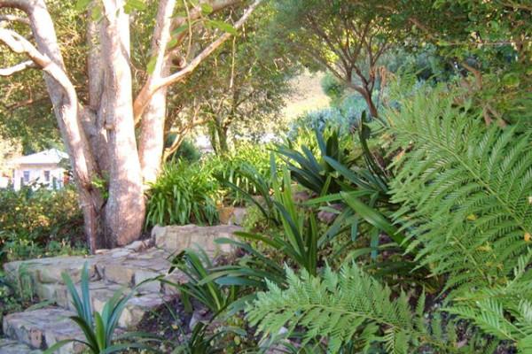 fernkloof-gardens