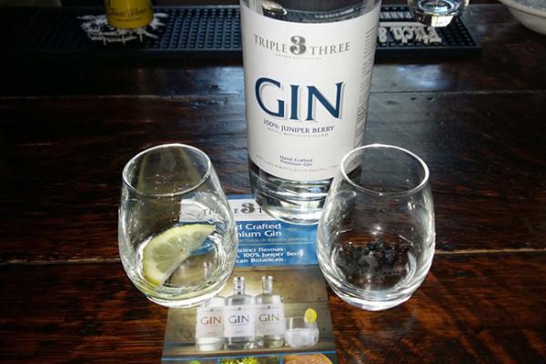 gin-2-