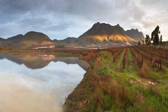 TRADITION MAKES RIEBEEK CELLARS WINES TOPS & TRADITION MAKES RIEBEEK CELLARS WINES TOPS | CapeTown ETC