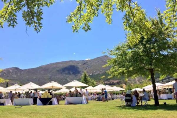 summer_wines1