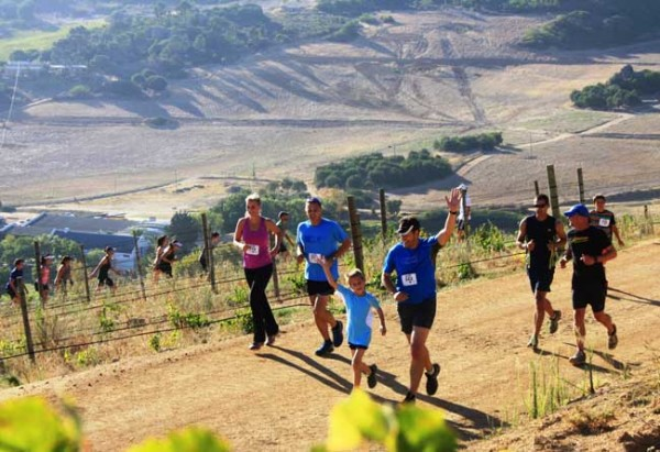 Run-the-Vines-at-Rhebokskloof