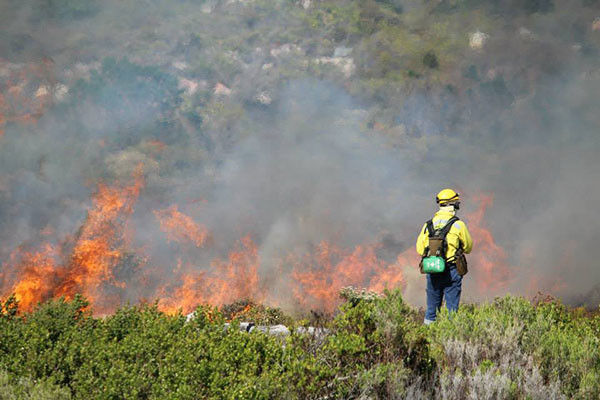 controlled-burns-1