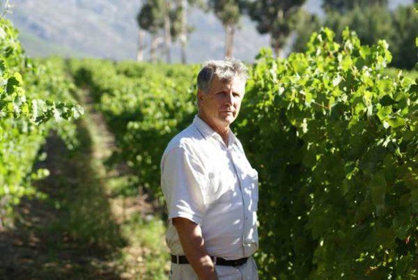 Alberto-in-vineyards