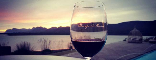LOVE WINE SUNDAYS AT BENGUELA COVE IN HERMANUS