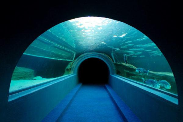 Two-Oceans-Aqaurim-FI