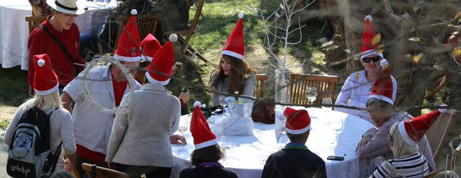 CHRISTMAS IN WINTER IN TULBAGH