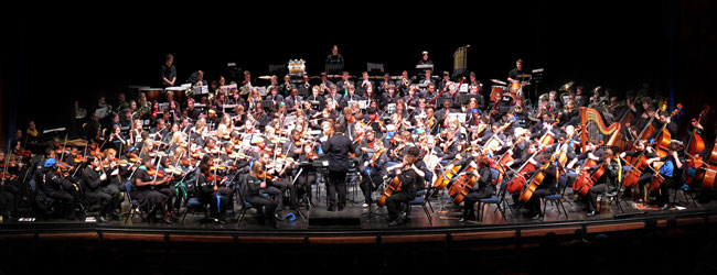 national youth orchestra perform at mandela day