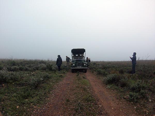 Bartholomeus-Klip-game-reserve