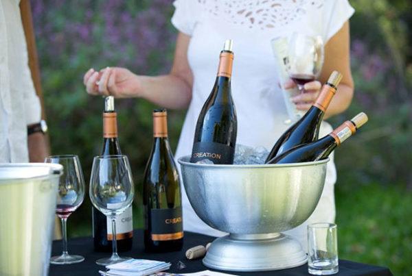 vineyard-hotel-winess