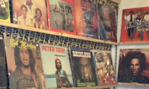 observatory vinyl fair