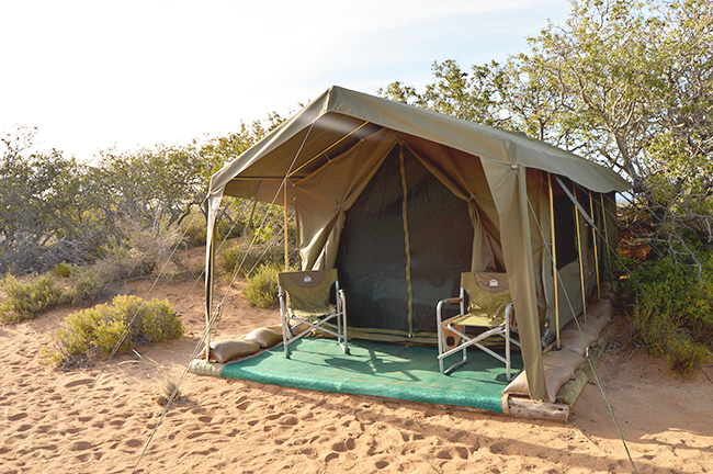 Sanbona Explorer Camp tent