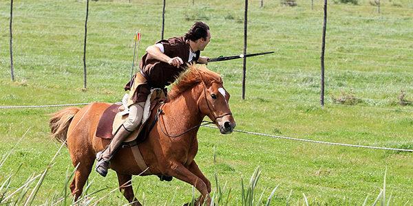 elim-wine-festival-horse