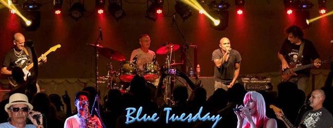 Blue Tuesday at Die Boer