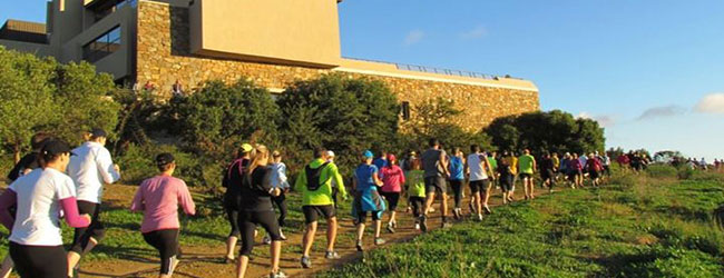 Durbanville Hills Harvest Trail Run