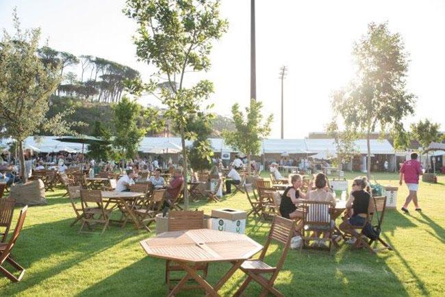 4 Reasons to head to the Stellenbosch Wine Festival