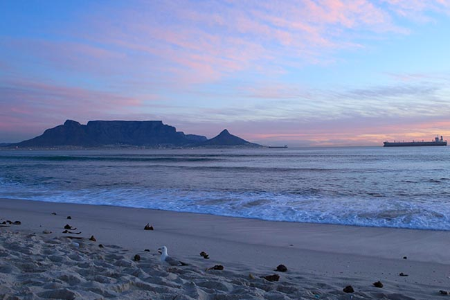 things to do and places to visit in cape town south africa