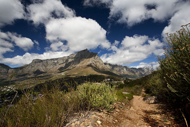 TableMountain G van Nelson