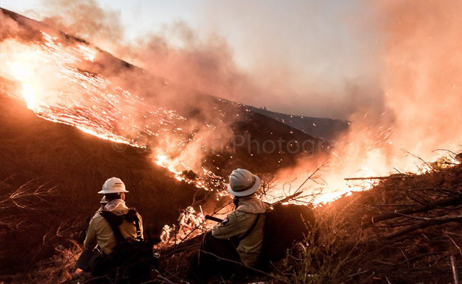 A photographic tribute to South African firefighters