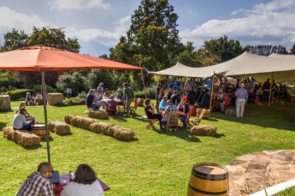 What to expect at the Elgin Cool Wine & Country Food Festival 2017