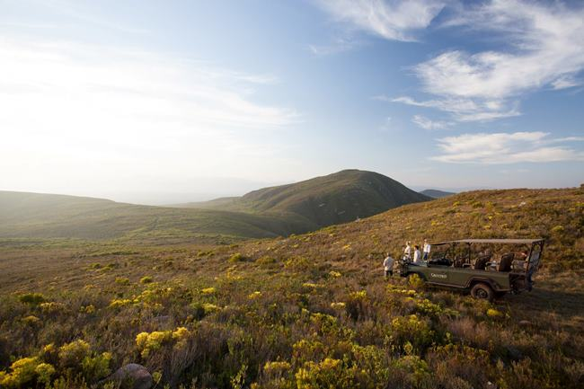The secret season at Grootbos